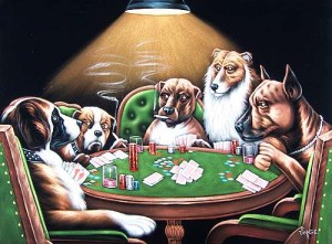dogs-playing-poker-11